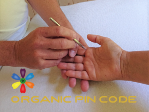 Organic Pin Code